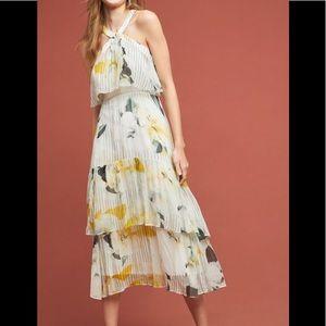 Anthropologie Garden Party Dress